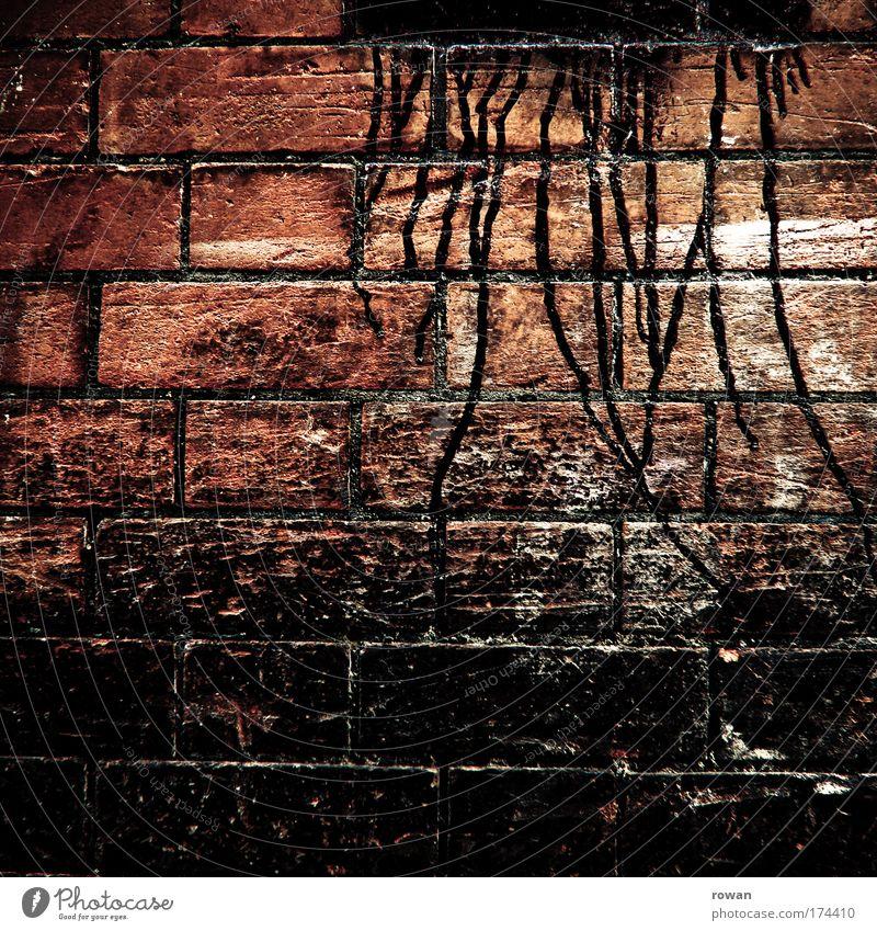 black Farbfoto Gedeckte Farben Außenaufnahme Strukturen & Formen Tag Haus Bauwerk Gebäude Mauer Wand Fassade dunkel gruselig kalt trashig trist Traurigkeit