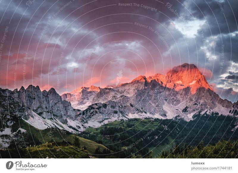 alpenglühen grün Landschaft rot Wolken Berge u. Gebirge grau Felsen wandern Urelemente Gipfel Alpen entdecken Hochgebirge