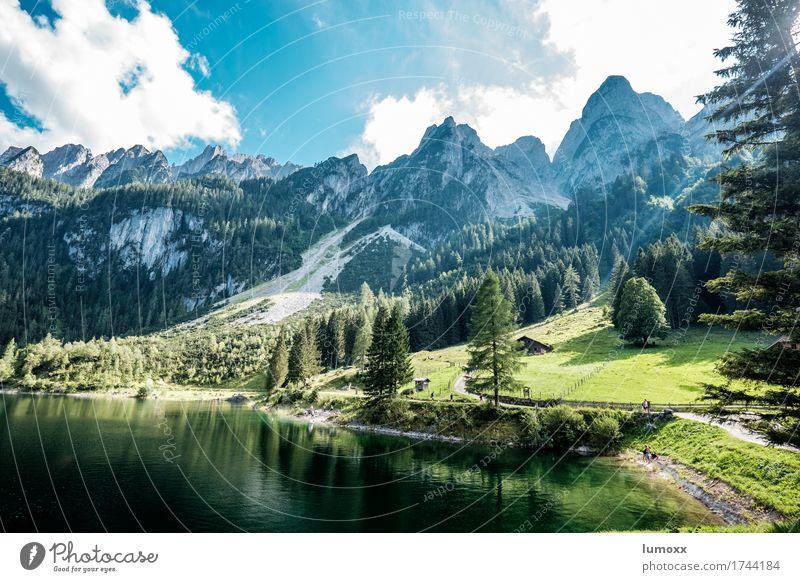 gosausee Umwelt Natur Landschaft Wasser Wolken Baum Wiese Wald Felsen Alpen Berge u. Gebirge Seeufer Gosausee Sauberkeit blau grün Farbfoto Außenaufnahme