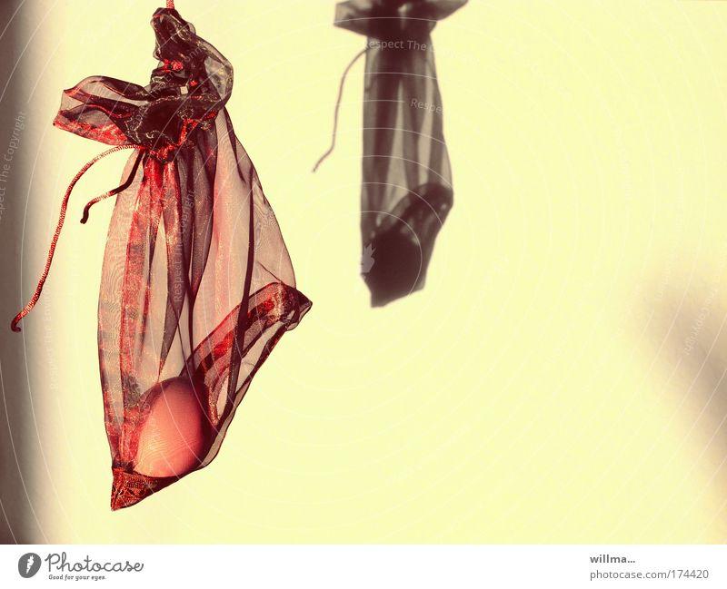 eierschaukeln Kunst Ernährung Geschenk Ostern skurril Ei durchsichtig hängen Handel Langeweile Kapitalwirtschaft Versteck Schattenspiel sparsam Moral