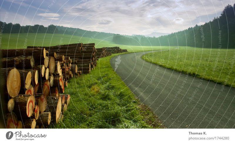 Der Weg ist das Ziel Wohlgefühl Zufriedenheit Erholung ruhig Ausflug Ferne Freiheit Joggen wandern Natur Landschaft Wolken Gras Wald Straße Wege & Pfade Holz