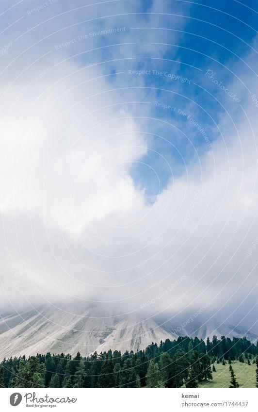 Hide and Seek II Himmel Natur Ferien & Urlaub & Reisen blau Sommer schön grün Landschaft Wolken ruhig Ferne Wald Berge u. Gebirge Leben außergewöhnlich Freiheit