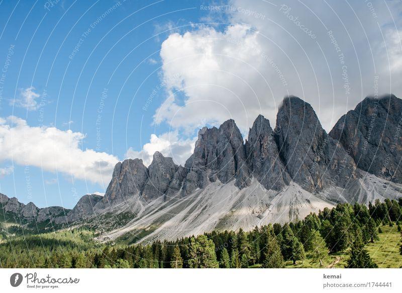 Geislerspitzen Himmel Natur Ferien & Urlaub & Reisen blau Sommer schön grün Landschaft Wolken ruhig Ferne Wald Berge u. Gebirge Leben Umwelt Freiheit