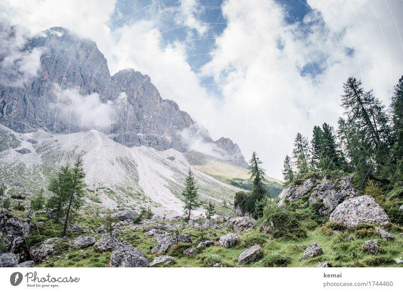 Wunderbare Bergwelt Himmel Natur Ferien & Urlaub & Reisen Pflanze Sommer schön Landschaft Baum Erholung Wolken ruhig Ferne Berge u. Gebirge Leben Umwelt
