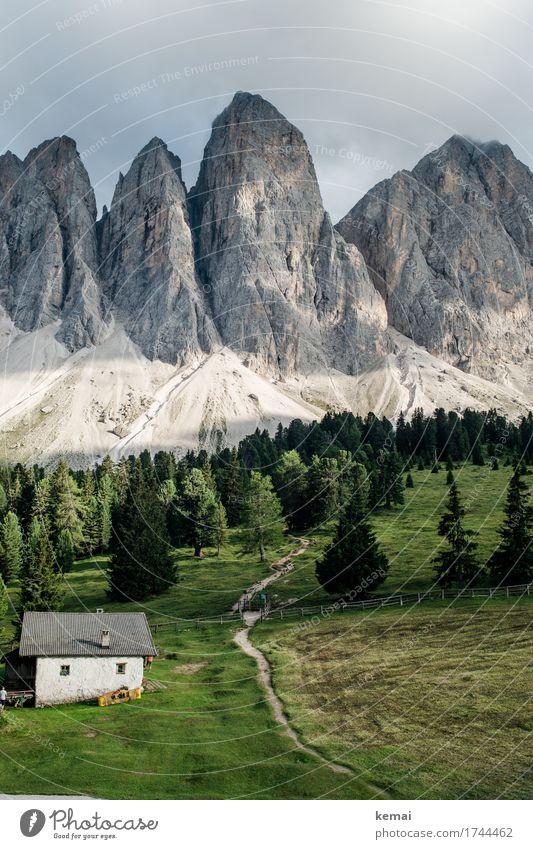 Gipfel Natur Ferien & Urlaub & Reisen Sommer grün Landschaft Erholung ruhig Ferne Wald Berge u. Gebirge Umwelt Freiheit Felsen Ausflug Zufriedenheit wandern