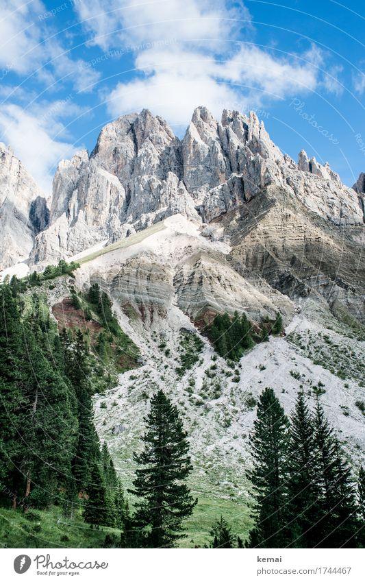 Dolomiti Ferien & Urlaub & Reisen Abenteuer Ferne Freiheit wandern Südtirol Umwelt Natur Landschaft Pflanze Urelemente Himmel Wolken Sommer Schönes Wetter Baum