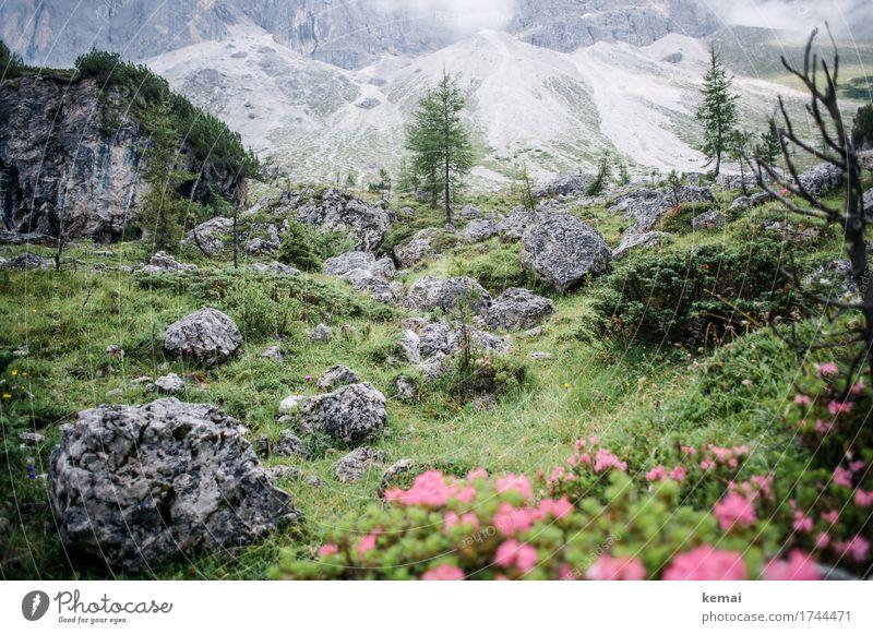 Grünes Tal Leben harmonisch Wohlgefühl Sinnesorgane Freizeit & Hobby Ferien & Urlaub & Reisen Tourismus Ausflug Abenteuer Freiheit Berge u. Gebirge wandern