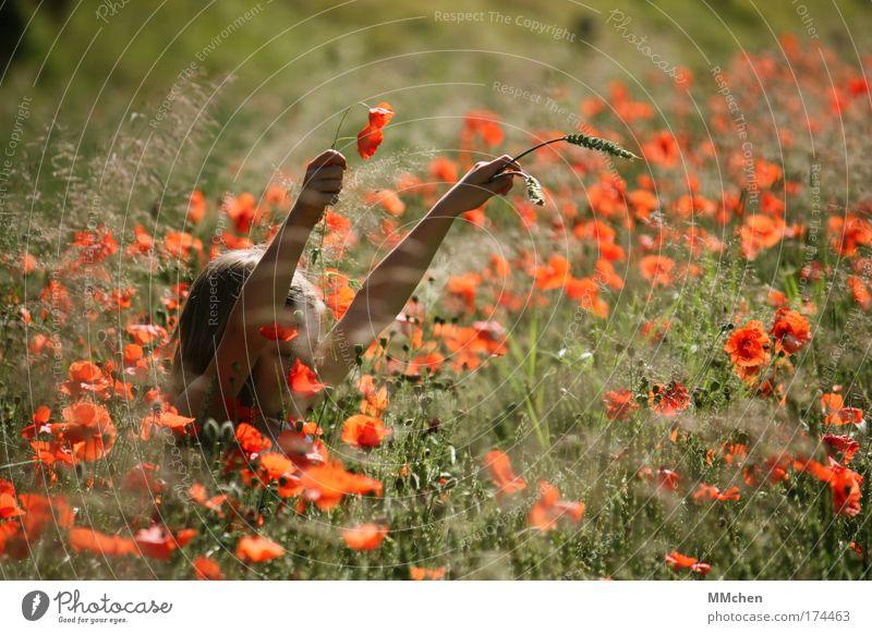 MohnMädchen Farbfoto Außenaufnahme Tag Zufriedenheit Duft Sommer Kind Kindheit Natur Blume Nutzpflanze Feld Fröhlichkeit Glück wild grün rot