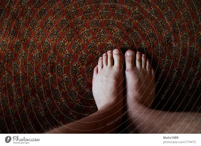 Hausschuhe Farbfoto Innenaufnahme Experiment Haare & Frisuren Haut Mensch maskulin Erwachsene Beine Fuß 1 Sommer Strümpfe Schuhe Bewegung sitzen stehen Teppich