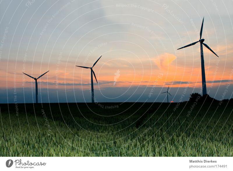 Die dreisten drei Natur Himmel Sonne rot Wiese Feld Wind Umwelt Romantik Getreide Windkraftanlage Landwirtschaft Sonnenuntergang Biologische Landwirtschaft umweltfreundlich Erneuerbare Energie