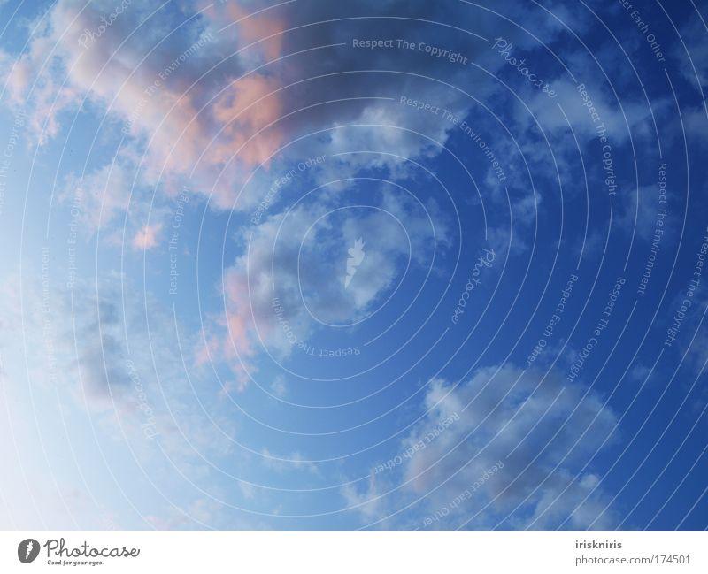 Blue Sky Blauer Himmel blau Wolken Abenddämmerung Dämmerung leicht frei bauschig Luft rot Sonnenstrahlen Wetter Wattewölkchen fliegen ziehen Verlauf schön