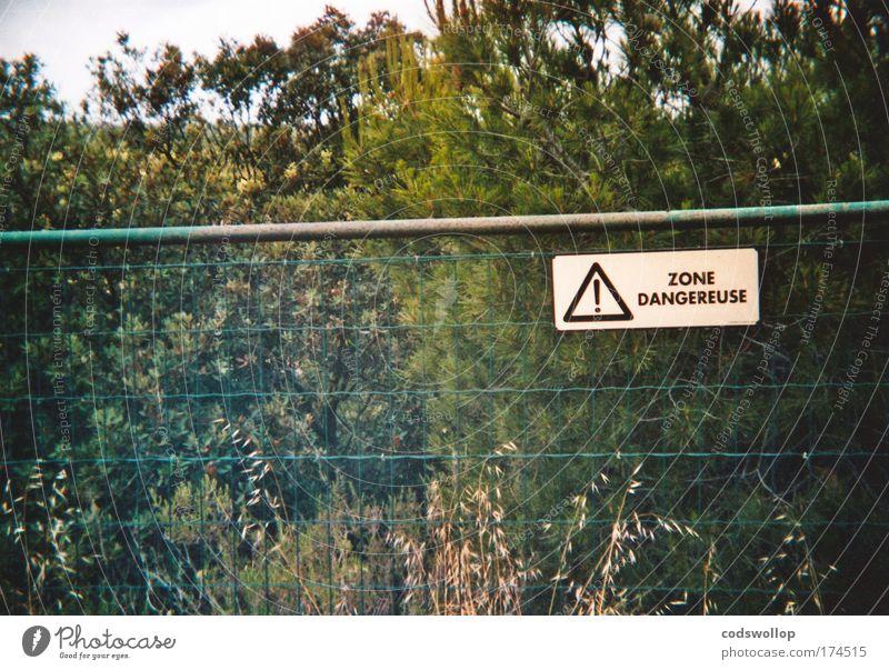 kenny loggins garden fence Natur Pflanze Landschaft Umwelt Garten Angst Schilder & Markierungen gefährlich Sicherheit bedrohlich Kommunizieren Hinweisschild