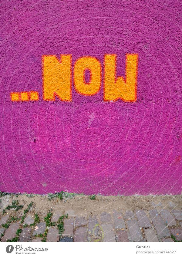 ...never Haus gelb Wand grau Mauer Graffiti violett Kunst mehrfarbig trendy graphisch Gegenwart Stadtrand 3