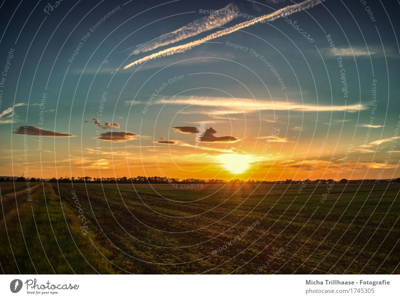 Sonnenuntergang auf freiem Feld Ferien & Urlaub & Reisen Umwelt Natur Landschaft Himmel Wolken Sonnenaufgang Sonnenlicht Schönes Wetter Gras Nutzpflanze