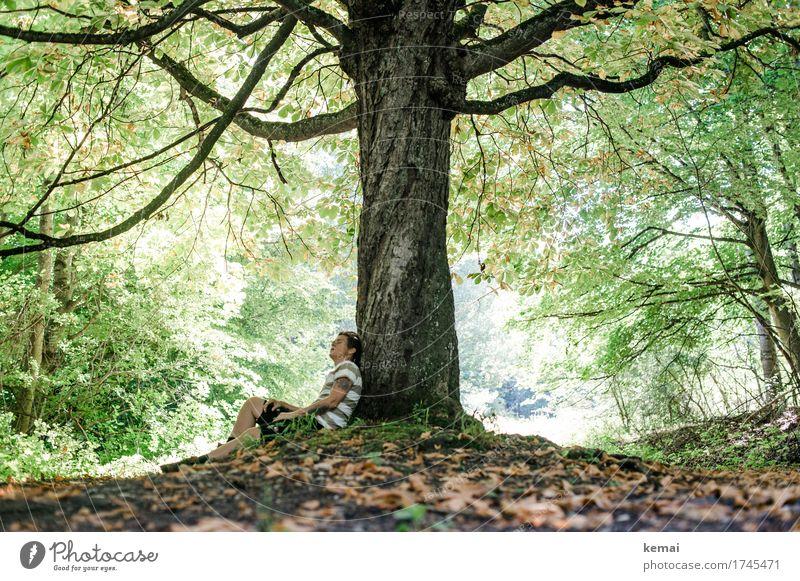 Frau lehnt an einem Baum und schaut nach oben Lifestyle harmonisch Wohlgefühl Zufriedenheit Sinnesorgane Erholung ruhig Freizeit & Hobby Ausflug Freiheit