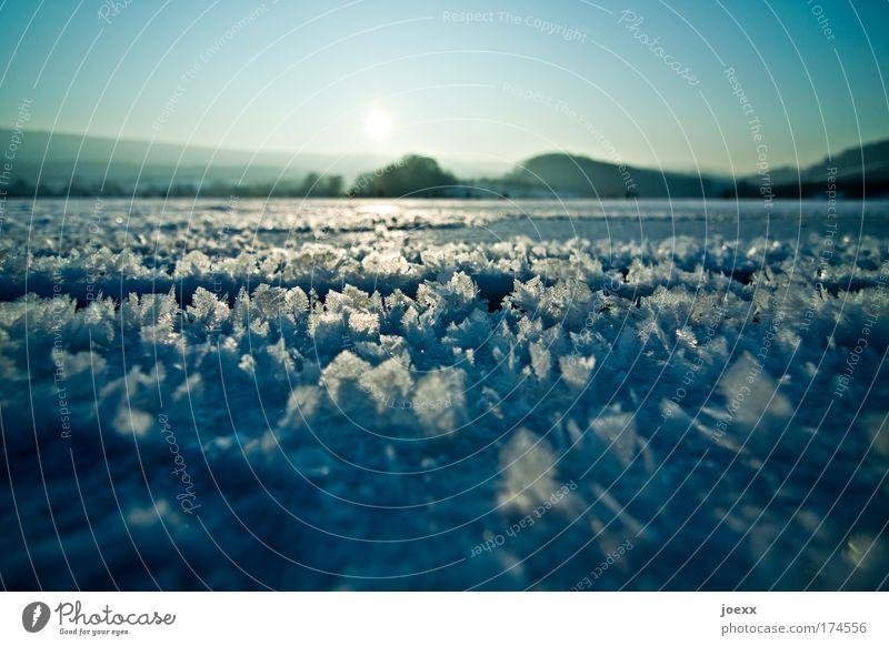 Schmetterlingsflügel aus Eis Natur Himmel grün blau Winter ruhig kalt Landschaft Luft Frost Schönes Wetter Schneelandschaft Vorsicht Eiskristall Reinheit
