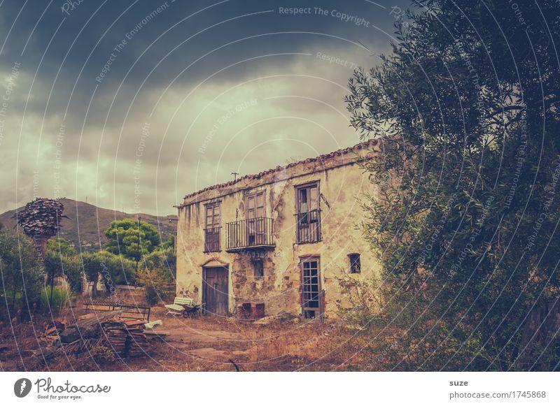 Nachlass Natur alt Einsamkeit Fenster dunkel Architektur Gebäude braun Fassade dreckig Tür trist authentisch malerisch Italien Vergänglichkeit