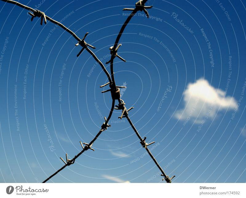 Stacheldraht Himmel Wolken Ferne Freiheit Metall Schilder & Markierungen frei Seil Sicherheit gefährlich Vertrauen Gewalt Jagd Schönes Wetter Ärger Aggression