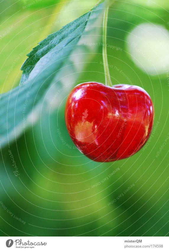 Iss Mich! rot Sommer Leben Erholung Gesundheit Frucht Appetit & Hunger reif Ernte hängen Kirsche fertig Heimat Gartenarbeit verführerisch knackig