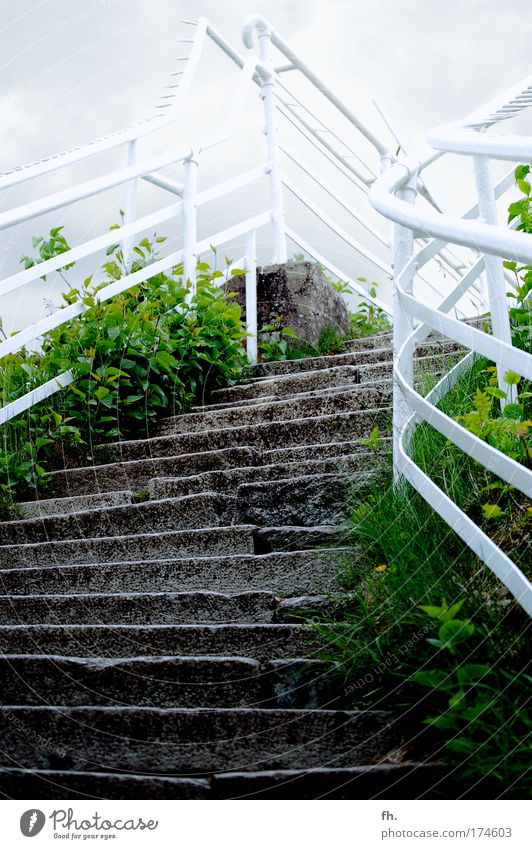 Stairway to Heaven Natur Himmel weiß grün Ferien & Urlaub & Reisen ruhig Wolken dunkel kalt Freiheit Stein Ausflug Treppe Tourismus Sträucher authentisch