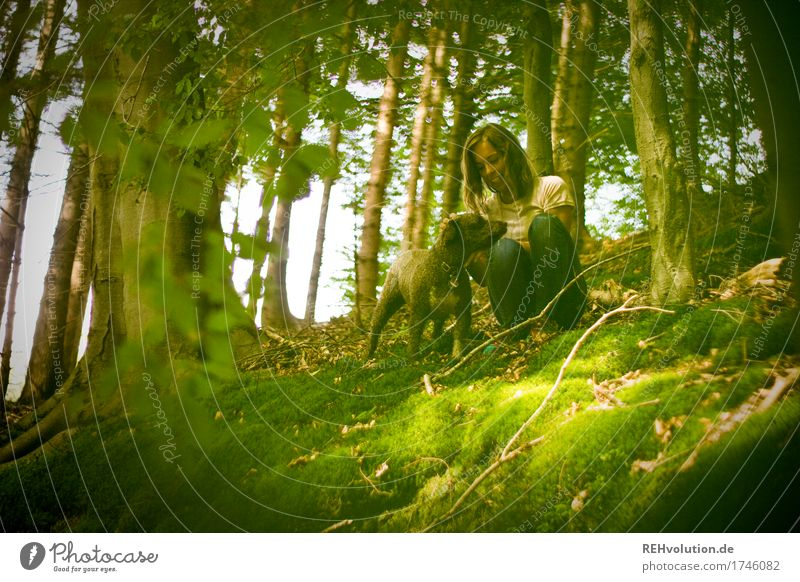 Julia | am Steinbruch Mensch Hund Natur Jugendliche Sommer Junge Frau Baum Landschaft Tier Freude Wald 18-30 Jahre Erwachsene Umwelt feminin Glück