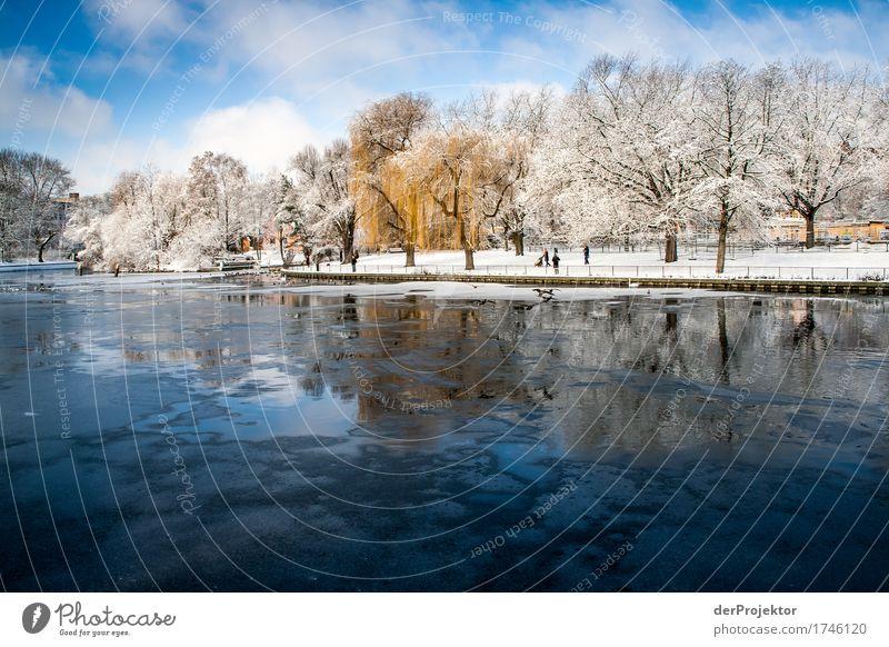 Berliner Winter: Früher Ferien & Urlaub & Reisen Tourismus Ausflug Abenteuer Ferne Freiheit Sightseeing Städtereise Schnee Winterurlaub Umwelt Natur Landschaft