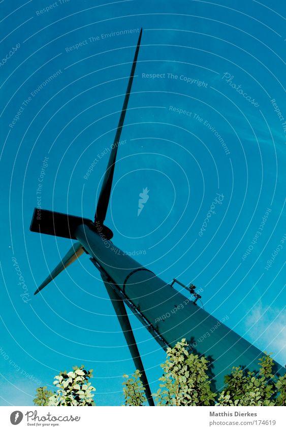 Windrad Natur Himmel Sonne rot Wiese Feld Wind Umwelt Romantik Getreide Windkraftanlage Biologische Landwirtschaft Koloss gigantisch umweltfreundlich Erneuerbare Energie