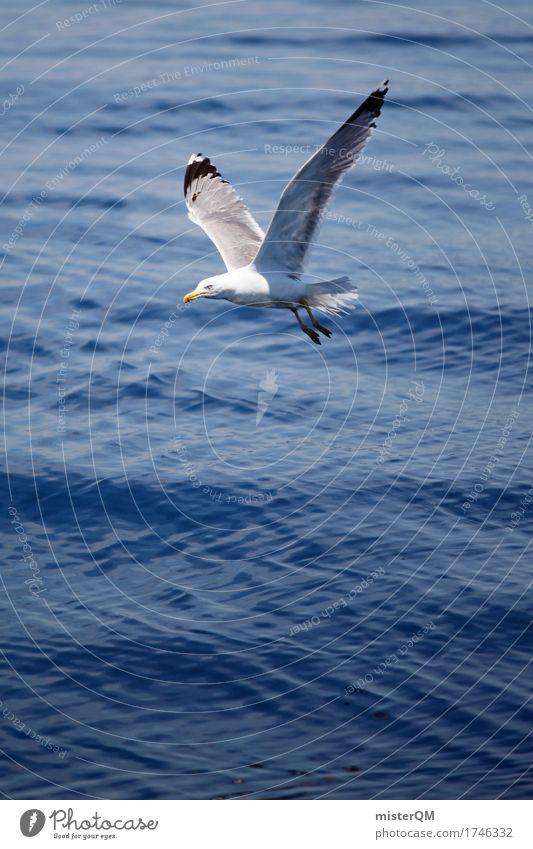fly away. Natur blau Sommer Meer Umwelt Kunst fliegen ästhetisch Sommerurlaub Möwe leicht Wasseroberfläche sommerlich Möwenvögel