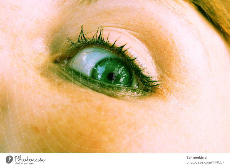 Dann lass uns hinsehen Mensch Jugendliche Gesicht Auge feminin träumen Denken Erwachsene beobachten Sehnsucht leuchten Wachsamkeit Wimpern Spiegelbild achtsam