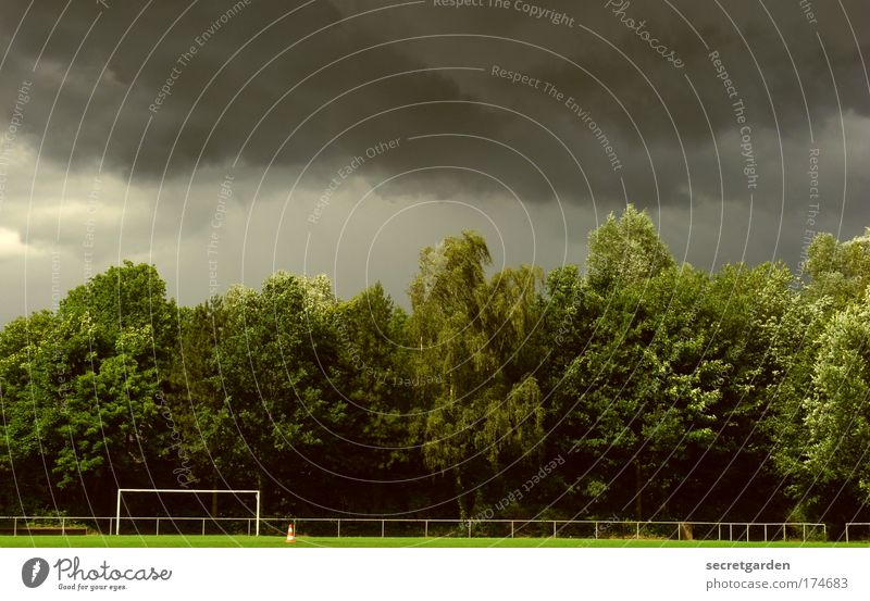 hintenrum. Himmel Baum grün Sommer Wolken Gras Park Fußball Gewitter schlechtes Wetter