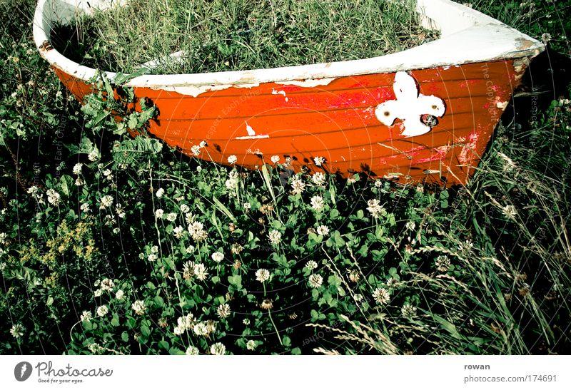 gestrandet alt grün rot Gras Wasserfahrzeug Verkehr Schifffahrt Segelboot voll Ruderboot Kreuzfahrt Anker Beiboot bewachsen Heilpflanzen Motorboot