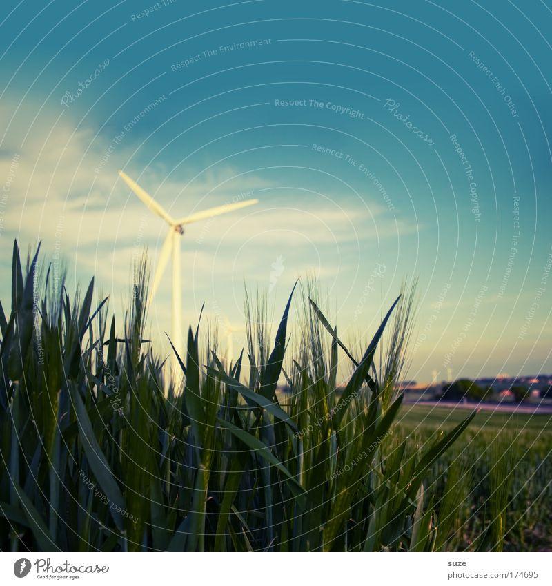 Windrad Natur Umwelt Feld Klima Energiewirtschaft Zukunft Industrie Getreide Windkraftanlage drehen Bioprodukte Wirtschaft Umweltschutz Klimawandel Fortschritt