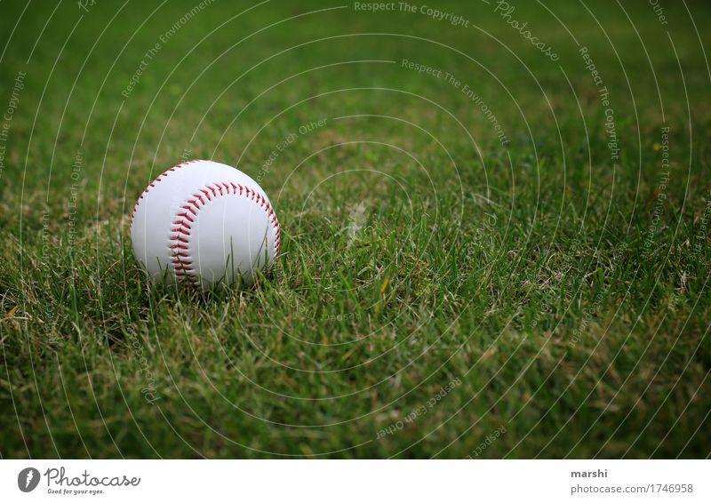 Baseball Wiese Sport Stimmung Fitness Sportmannschaft sportlich Amerika Ball Sport-Training Sportveranstaltung Ballsport Sportstätten