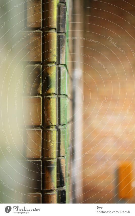 Stein auf Stein Farbfoto Gedeckte Farben Außenaufnahme Detailaufnahme Strukturen & Formen Menschenleer Dämmerung Schwache Tiefenschärfe Vorderansicht