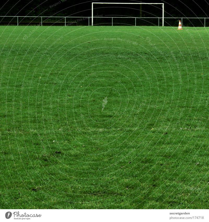 rein und raus. Natur grün Sommer Freude Einsamkeit ruhig Ferne Wiese Sport oben Gras Erde Freizeit & Hobby Fußball frei leer