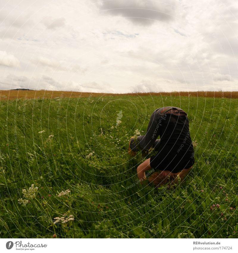 Dinge geraten nun ins rollen, die nicht aufzuhalten sind. Mensch Himmel Natur Jugendliche grün Freude Wolken Erwachsene Wiese Landschaft Spielen Freiheit Bewegung Glück Gesundheit Zufriedenheit
