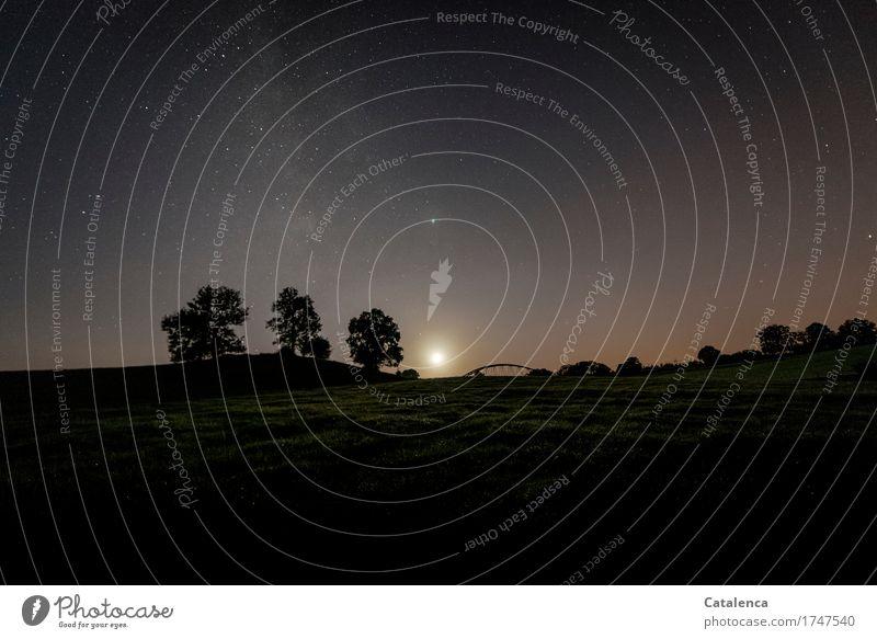 Untergang Natur Landschaft Pflanze Wolkenloser Himmel Nachthimmel Stern Horizont Mond Sommer Schönes Wetter Baum Gras Feld Bahnbrücke entdecken glänzend