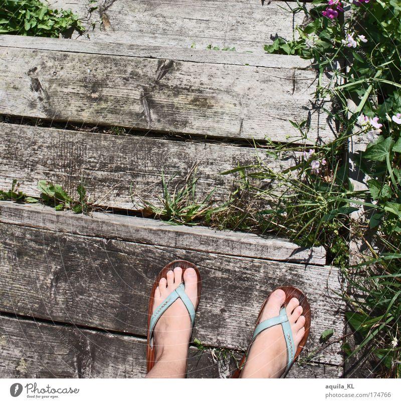 Der Steg alt Pflanze feminin Gras Fuß Treppe Schuhe kaputt Steg Zehen Treppenabsatz Wildpflanze Unkraut Flipflops