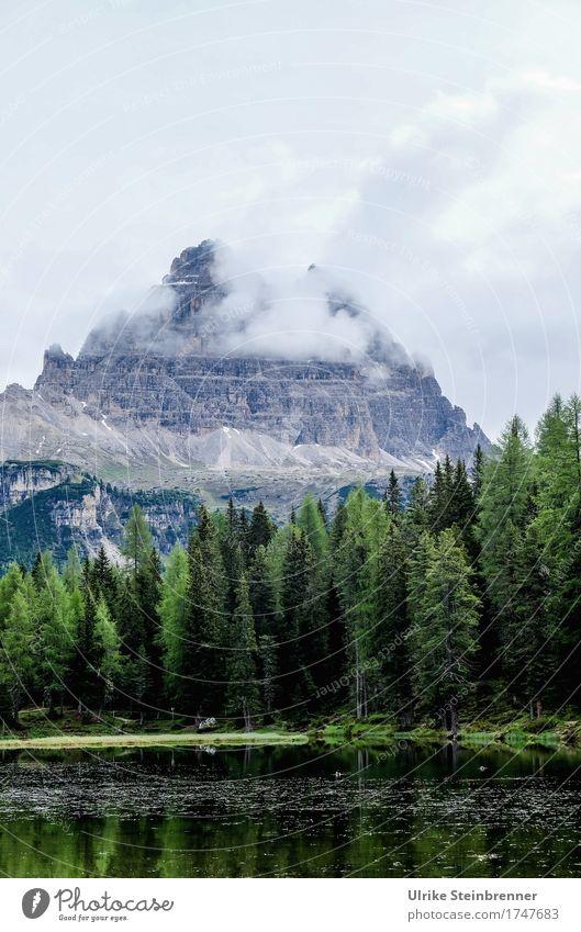 Am Lago d'Antorno Himmel Natur Ferien & Urlaub & Reisen Pflanze Sommer grün Baum Landschaft Wolken Berge u. Gebirge natürlich grau See Tourismus Felsen wild