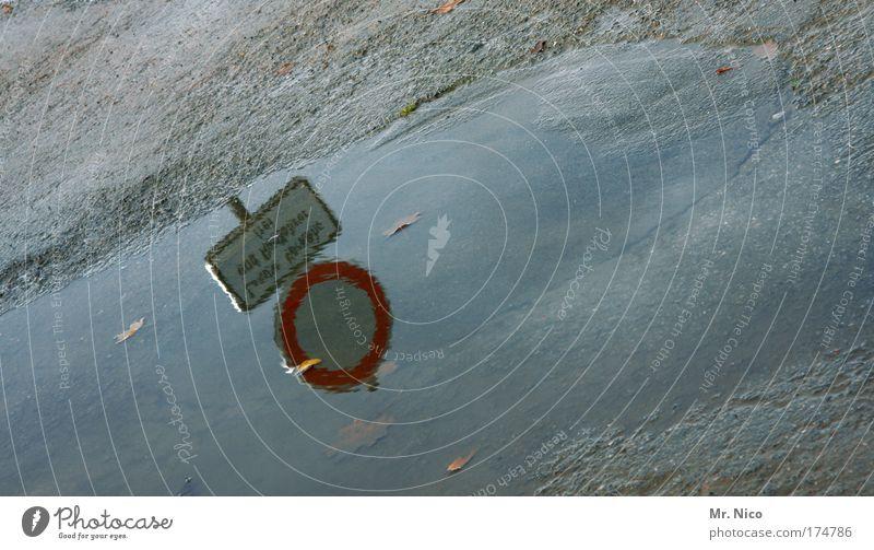 nasses schild Wasser Traurigkeit Wege & Pfade Regen Wetter Umwelt nass Klima Zeichen Gesetze und Verordnungen Hinweisschild Reflexion & Spiegelung Pfütze Klimawandel Fahrbahn Verkehrsschild