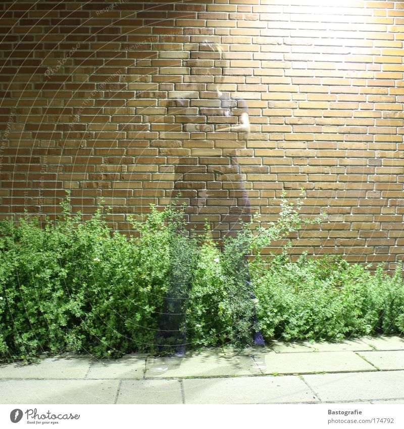 frauen sind durchschaubar ! Frau Mensch Wand durchsichtig Geister u. Gespenster Surrealismus Reaktionen u. Effekte Durchblick Geisterstunde ziegelrot