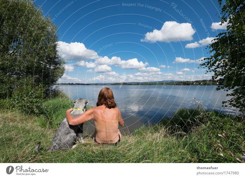 Frau, Hund, See, Sonne Freizeit & Hobby Ferien & Urlaub & Reisen Ausflug Sommer Strand Mensch feminin Erwachsene Kopf Rücken 1 Natur Landschaft Luft Wasser