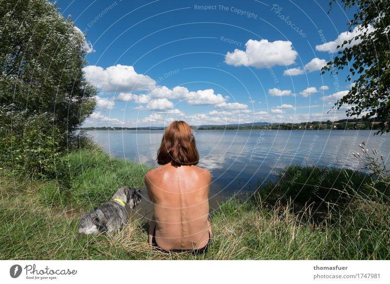 Frau, Hund, See, Sonne Badeurlaub Badewiese Ferien & Urlaub & Reisen Ausflug Sommer Sommerurlaub Strand Mensch feminin Erwachsene Kopf Rücken 1 Natur Landschaft