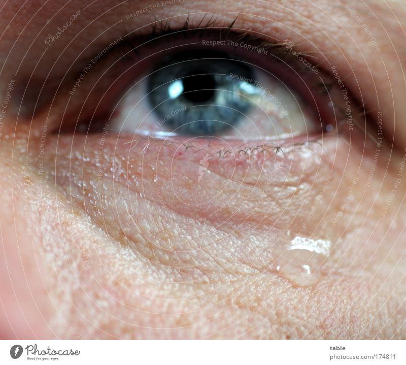 Abschied Mensch Mann blau Gesicht ruhig Auge Einsamkeit Gefühle Tod Traurigkeit Erwachsene Trauer Tropfen Vergänglichkeit beobachten natürlich