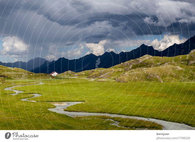 Hochmoor Natur Pflanze blau Sommer grün Wasser Wolken außergewöhnlich Regen Wetter wandern bedrohlich Gipfel Ziel Alpen Hütte