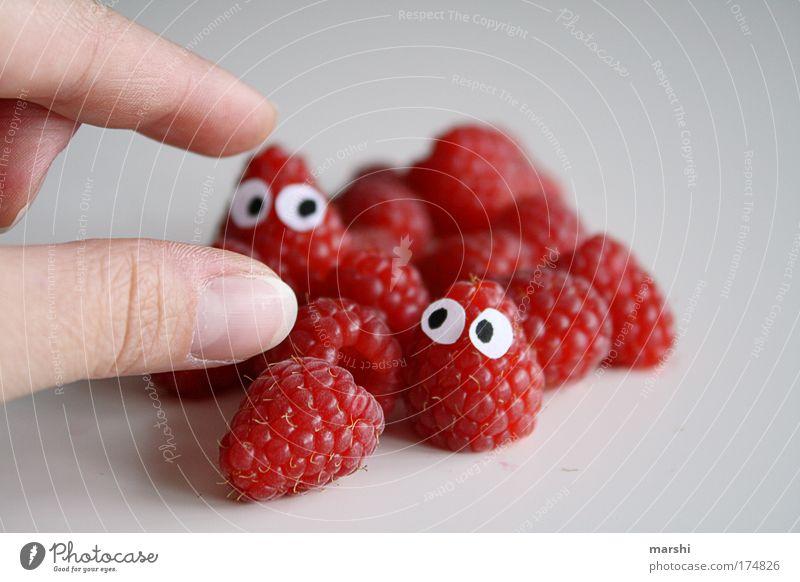 die letzten werden die ersten sein...in meinem Bauch:-) rot Freude Auge Ernährung Mensch Beeren Angst Gesundheit lustig klein Essen Lebensmittel Frucht Finger