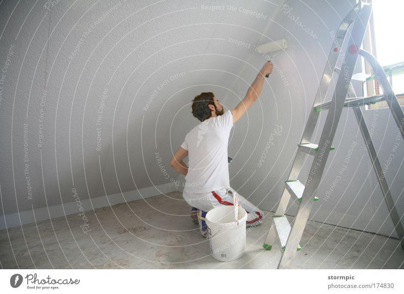 Malerarbeiten Mensch weiß Haus Erwachsene Wand Gebäude Mauer hell Arbeit & Erwerbstätigkeit maskulin neu Häusliches Leben Baustelle Dach Sauberkeit Bauwerk