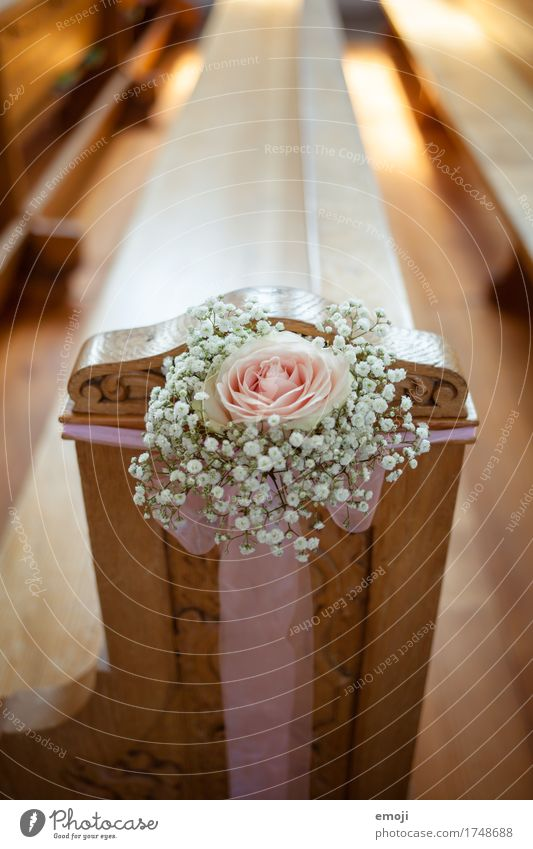 Trauung Blume Rose Dekoration & Verzierung Blumenstrauß Schleife Kitsch Krimskrams Klischee Hochzeit Farbfoto Innenaufnahme Detailaufnahme Menschenleer Tag