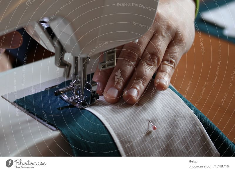 kreative Nähstunde Nähmaschine Mensch feminin Frau Erwachsene Hand Finger 1 30-45 Jahre authentisch einzigartig braun grau grün weiß Freude Kreativität Ordnung