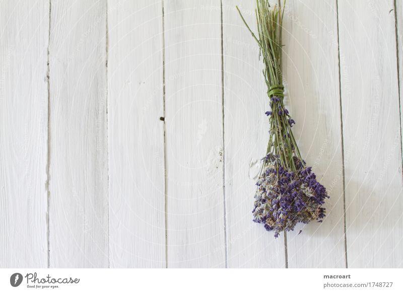 Lavendel auf Holzplatte flos Tisch Blume Blüte Blumenstrauß violett Duft Geruch Holztisch beruhigend Heilpflanzen Medikament angustifolia vera sedativum unruhig